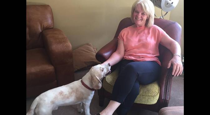 Dog Care Bromsgrove #Love&Care, dog sitter in Bromsgrove District