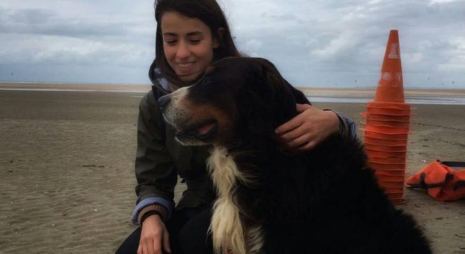 Dog sitter experimentée prendra soin de vos chiens, dog sitter à PARIS