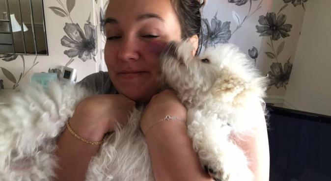 Un hotel 5 étoiles pour votre toutou, dog sitter à Boulogne-billancourt