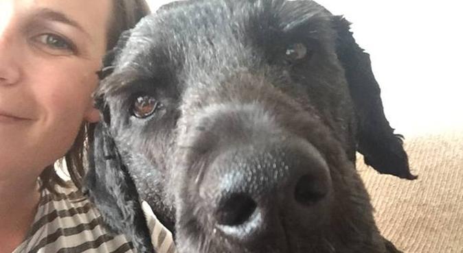 Hundekjær sporty jente ønsker turkamerat og venn, hundepassere i Oslo