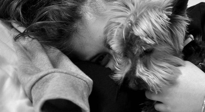 Un petit nid d'amour pour votre chien, dog sitter à Montreuil