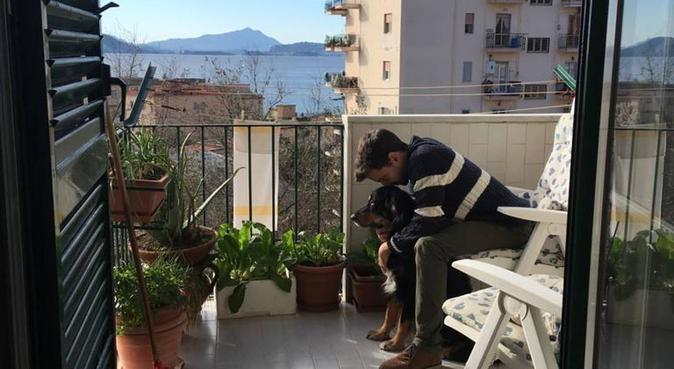 Camminare, passeggiare e tante carezze!, dog sitter a Padova
