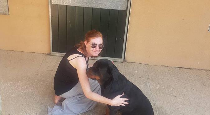 Cuddles for all dogs :), dog sitter à Nogent-sur-Marne, France