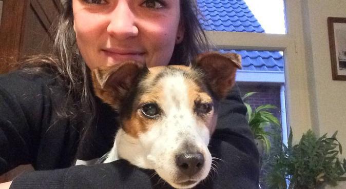Dog lover in the centre of Leiden, hondenoppas in Leiden