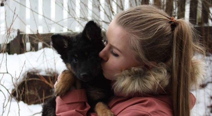 Hundeelsker med egen hund, hundepassere i Levanger