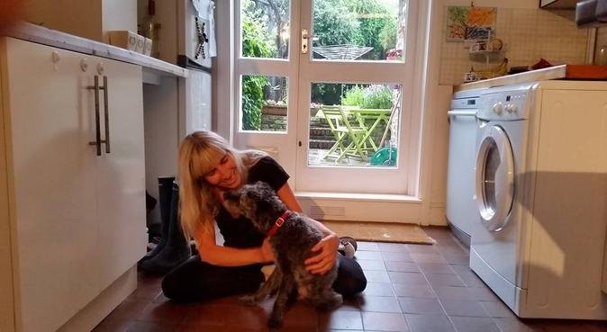 Pampered Pooches Pad, dog sitter in Greenwich