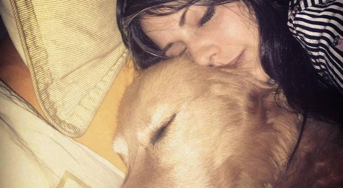 Dog lover, cuddling addicted, dog person, hondenoppas in The Hague