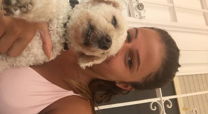 Au bonheur des toutous, dog sitter à Antibes, France