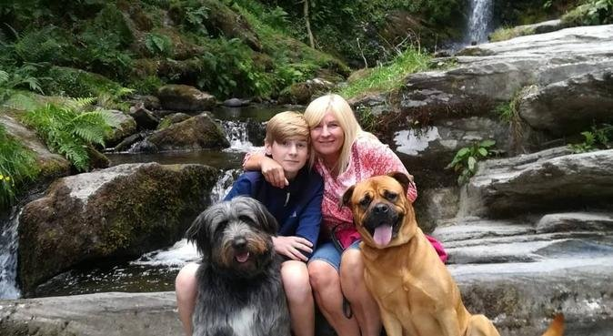 G,s doggy care, dog sitter in Liverpool