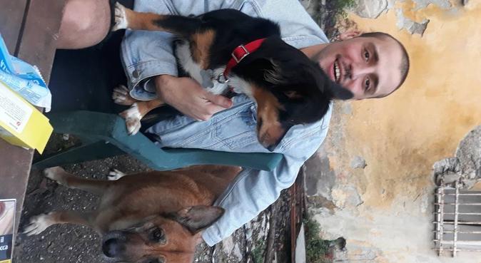 Happy fit!! Gioco e passeggiate, dog sitter a Genova, GE, Italia