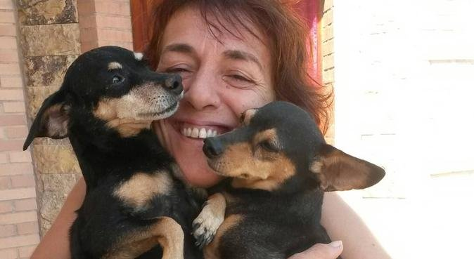 Canguro Mascotas se ofrece, canguro en zaragoza
