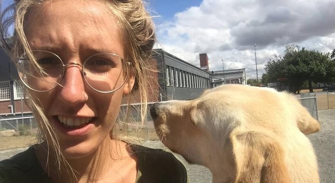 Experienced and loving dogsitter in Malmö, hundvakt nära Malmö