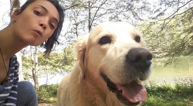 Amore, coccole e passeggiate per pelosi a 4 zampe., dog sitter a La Spezia