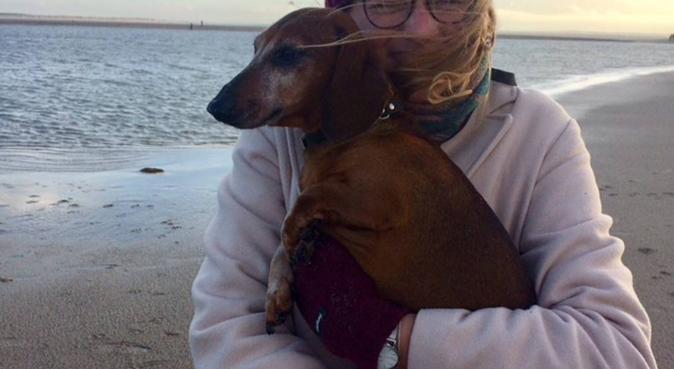 Teckel Lover in Rotterdam, hondenoppas in Rotterdam