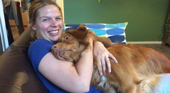 Oppas met aandacht en plezier in Utrecht, hondenoppas in Utrecht