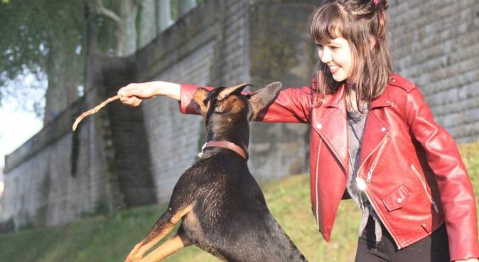 Une humaine et un chien pour garder vos loulous!, dog sitter à Tours