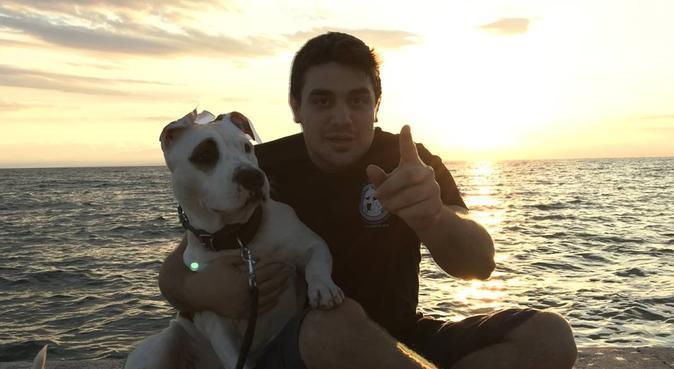 Cuddling Stay and Productive walks for your loved!, hundvakt nära Upplands-väsby