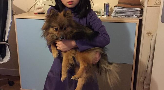 Avec moi, câlins assurés !, dog sitter à Rueil-Malmaison
