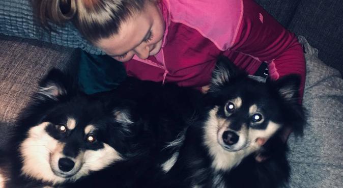 Lærerstudent som ønsker turkompis!, hundepassere i Trondheim, Norge