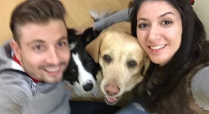 Home full of love!, dog sitter in Madrid