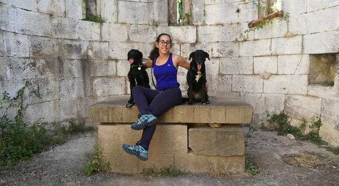 Divertimento e sicurezza per il vostro amico, dog sitter a Pisa