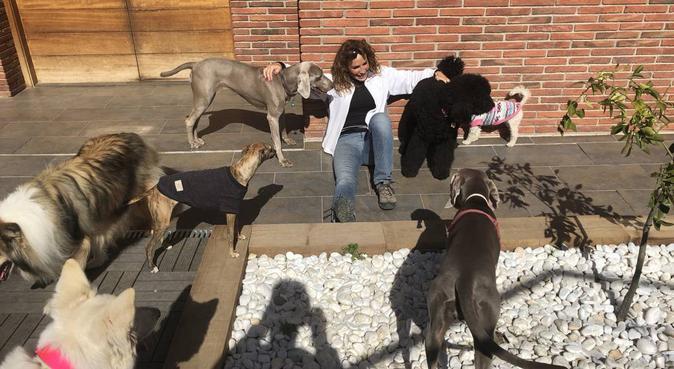 VACACIONES EN LA MONTAÑA PARA TU MASCOTA, canguro en Barcelona