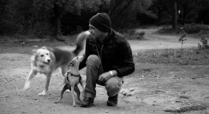 Jardines, playa y montaña., dog sitter à Marbella, España