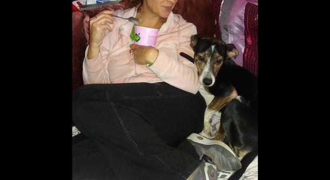 Una famiglia per le vacanze, dog sitter a Padova
