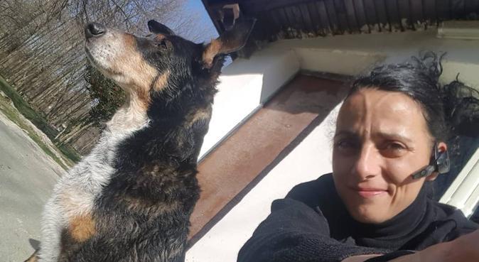 vacanze per i nostri amici pelosoni con coccole e, dog sitter a Rocca di Papa