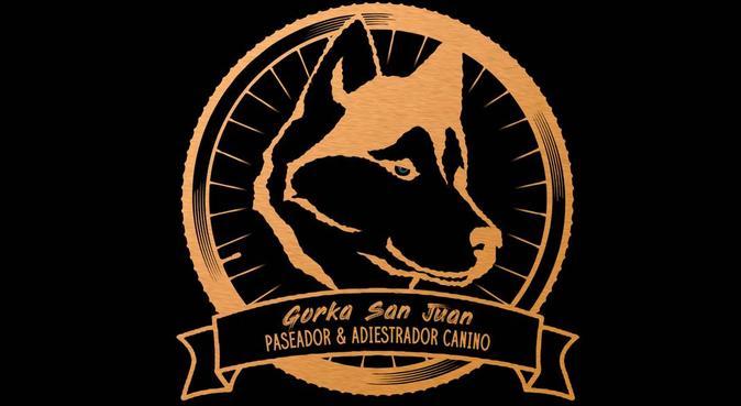 Paseador canino profesional, canguro en Alicante
