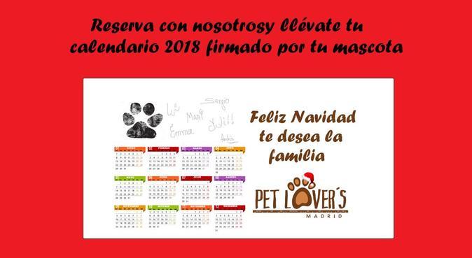 Calor de hogar y familia para tu mascota  🐶❤🐕, canguro en Madrid