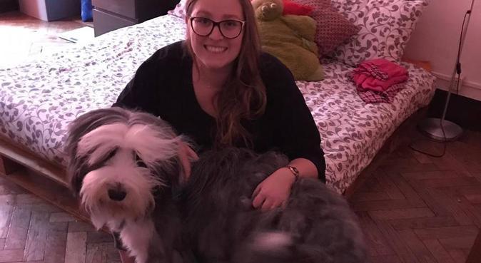 Affetto, competenza, esperienza e professionalità, dog sitter a Torino, TO, Italia