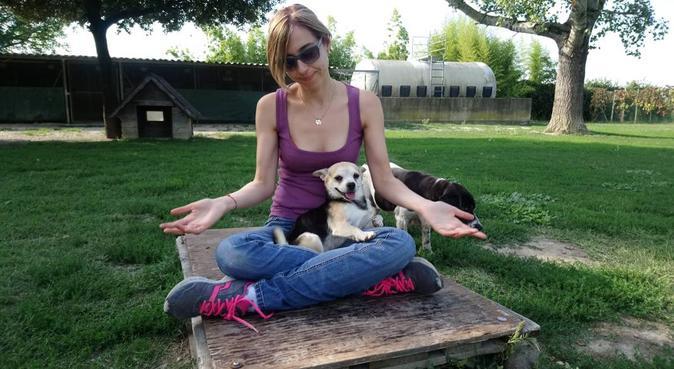 Coccole, passeggiate e tanti giochi!, dog sitter a Milano