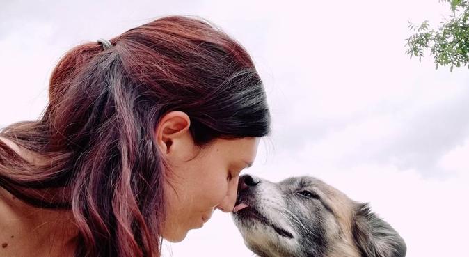 Educatrice cinofila, dog sitter a Sesto Fiorentino