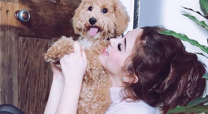 Puppy Love 101, dog sitter in London, UK