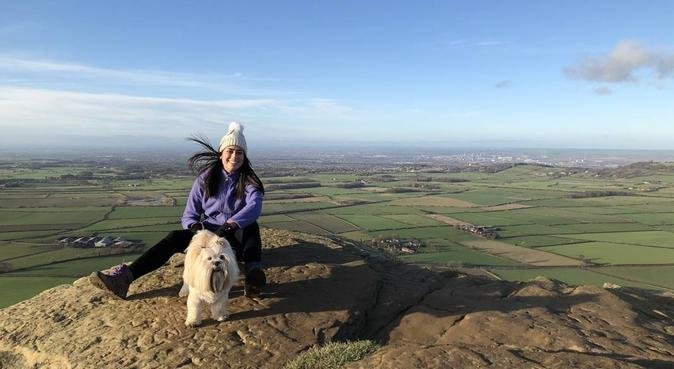 Wagging Tails, dog sitter in Houghton le Spring