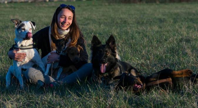 Pet Sitter / Lover, dog sitter à Nancy