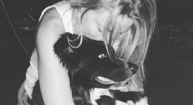 io ed il tuo cane = amici a sei zampe, dog sitter a modena