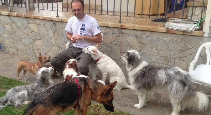 CINOLANDIA - BS, dog sitter a brescia