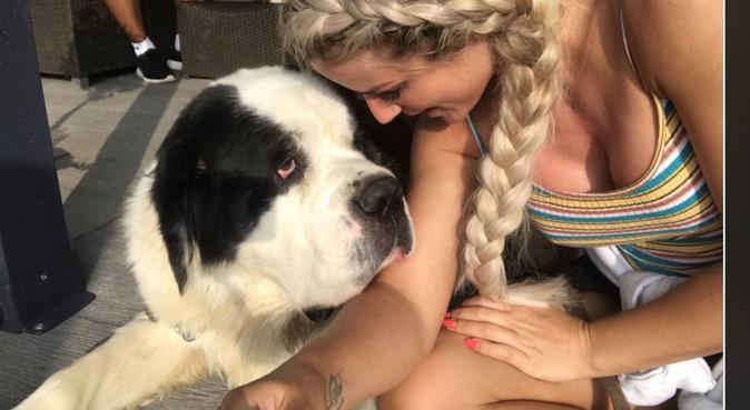 It's potty time!, dog sitter in Weybridge, UK