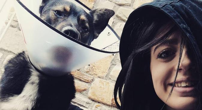 Giochi, passeggiate e coccole assicurati, dog sitter a Firenze, FI, Italia