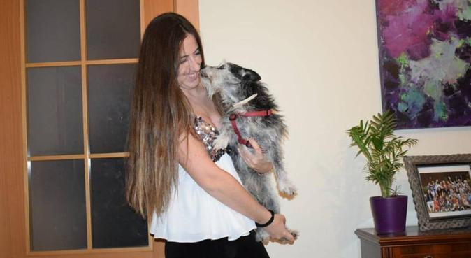Casa mia è casa del suo cane, dog sitter a Parma