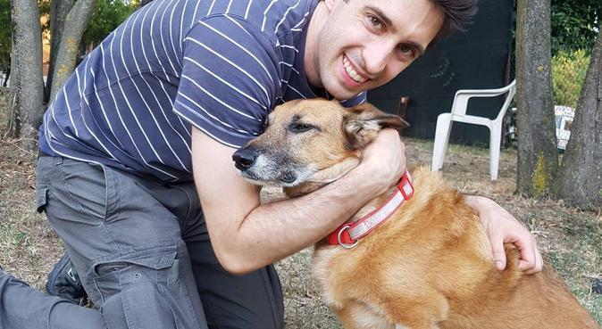 Gioco, passeggiate e tante coccole per i buboli!:), dog sitter a Castenaso