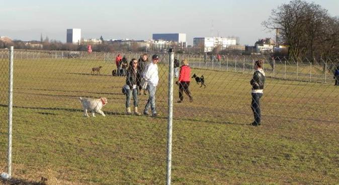 Harmony and Doggies, Hundesitter in Berlin