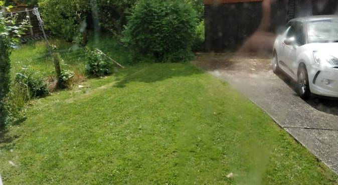 Dog lover who enjoys long walks!, dog sitter in Southampton, UK