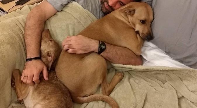 Il paradiso dei cagnolini, dog sitter a Florence