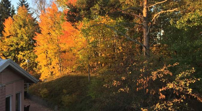 Beautiful walks in Stockholm, hundvakt nära Nacka, Sverige