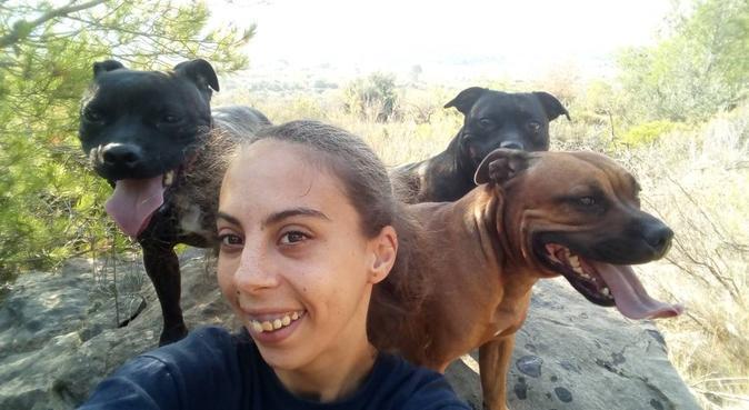 DiverDog Holl, tu mascota parte de nuestras vidas., canguro en El Grao de Castellón