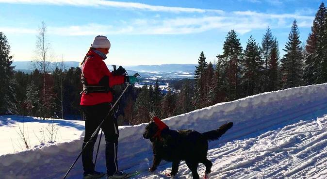 Hundens beste venn!, hundepassere i Oslo