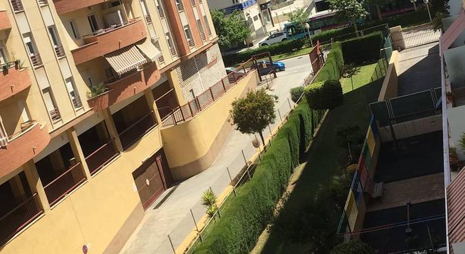 CUIDADOR DE PERROS 😄, canguro en Málaga, España